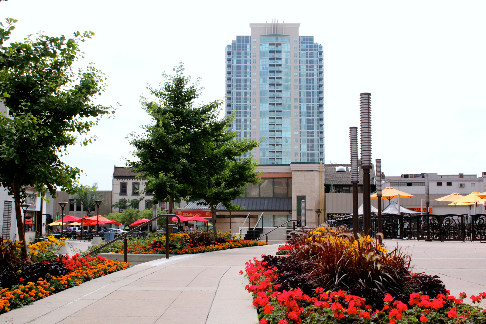 6 reasons you want to live in Brampton