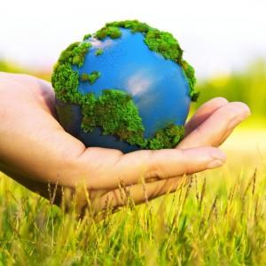 Make Your Home Environmentally Friendly