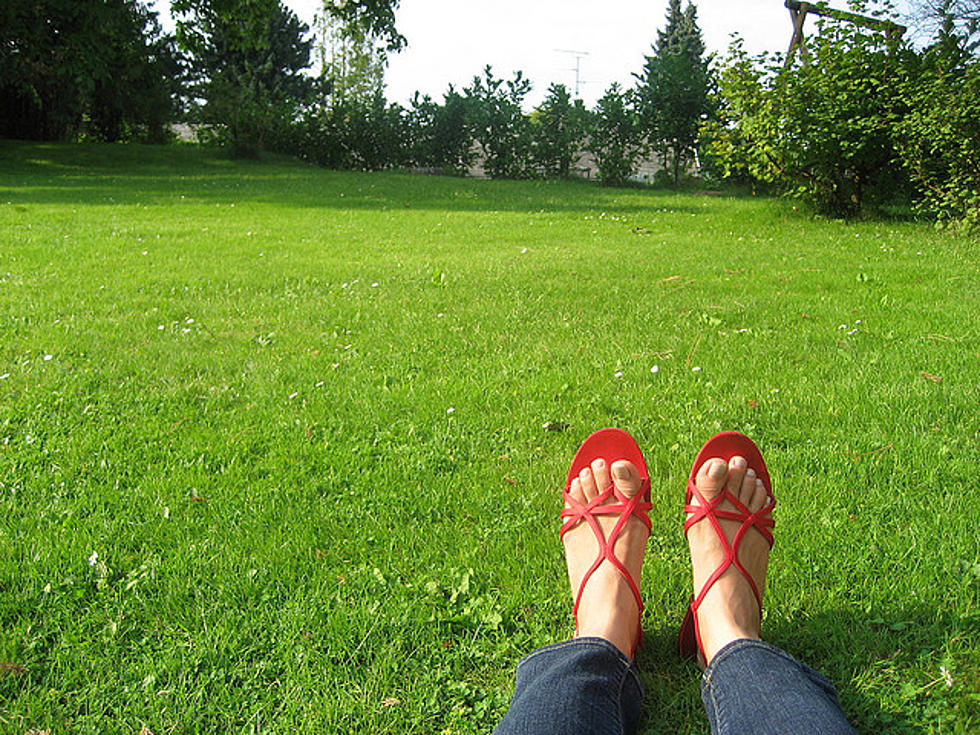 Summer Checklist for Your Outdoor Space